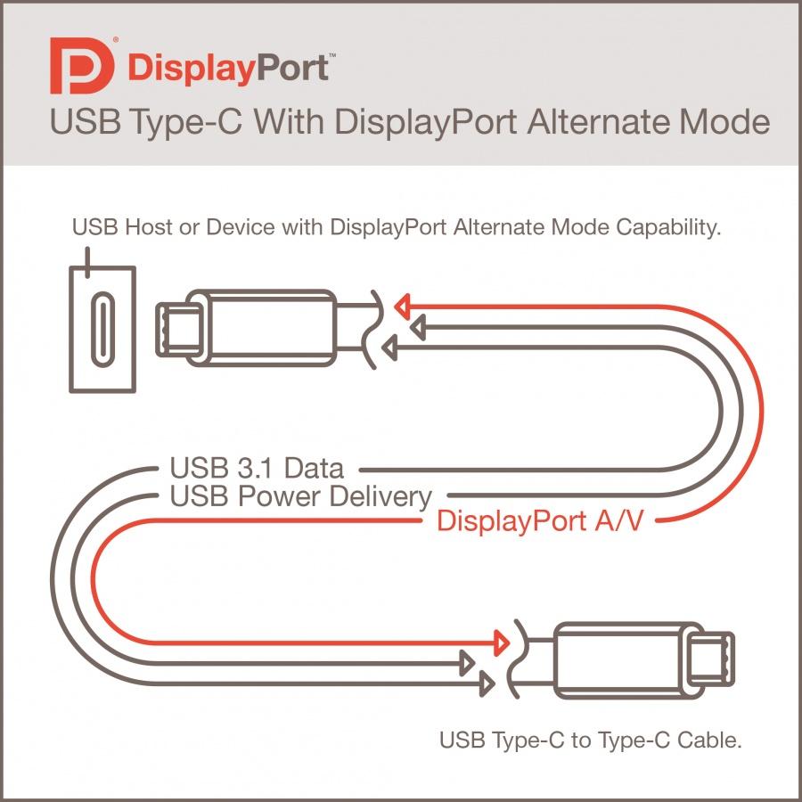 DisplayPortAltMode