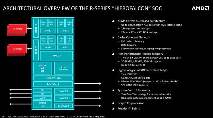 Hierofalcon AMD