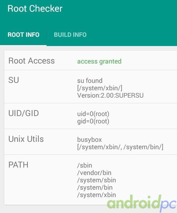 z64-root-03
