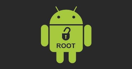 root logo n01